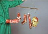gruselige Körperteile an Stange