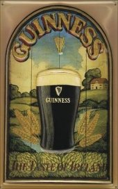 GUINNESS the taste of ireland Blechschild 20x30cm