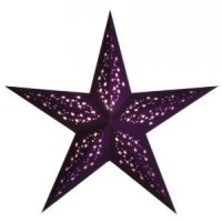 earth friendly Mia Violet 60cm Weihnachtsstern Starlightz