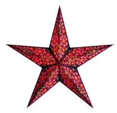 earth friendly Kalea Red 60cm Weihnachtsstern Starlightz
