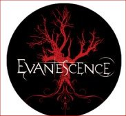 EVANESCENCE Badge A4 Button 55mm Metal NEU