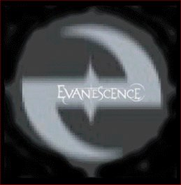 EVANESCENCE Badge A9 Button 55mm Metal NEU