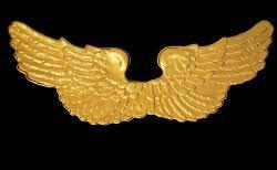 Engelsflügel gold Spannweite ca. 90 cm