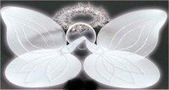 Engelchen-Set mit Engelsflügel aus Federn