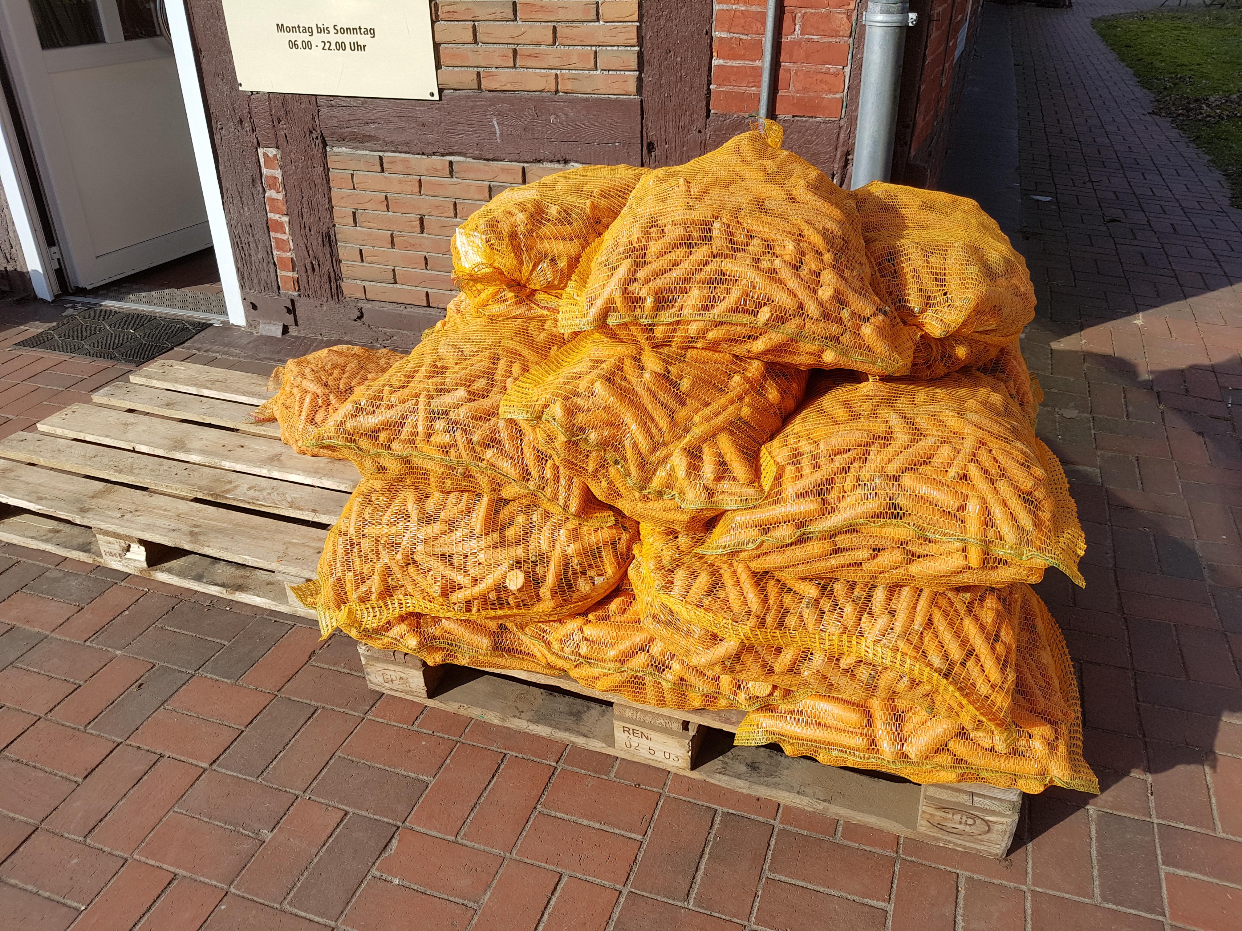 frische Futtermöhren 10kg Wurzeln Möhren